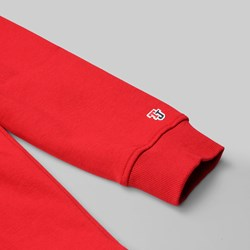TOMMY JEANS CLASS HEAVYWEIGHT CREW RED