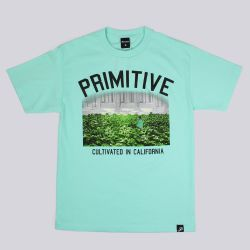 Primitive Apparel Garden T Shirt Sea Foam